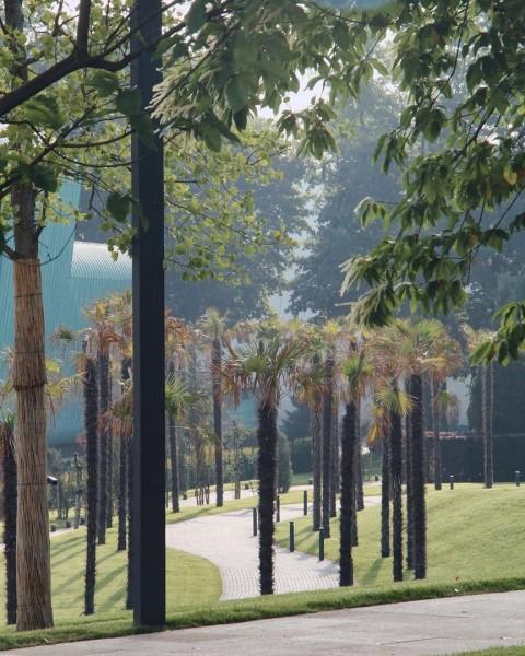 Парк «Краснодар» рано утром. Автор: uryevaanna